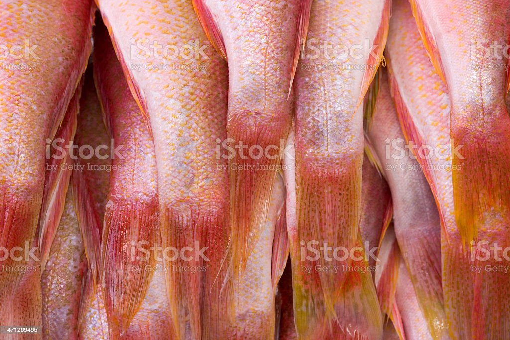 Fresh fish in market royalty-free stock photo