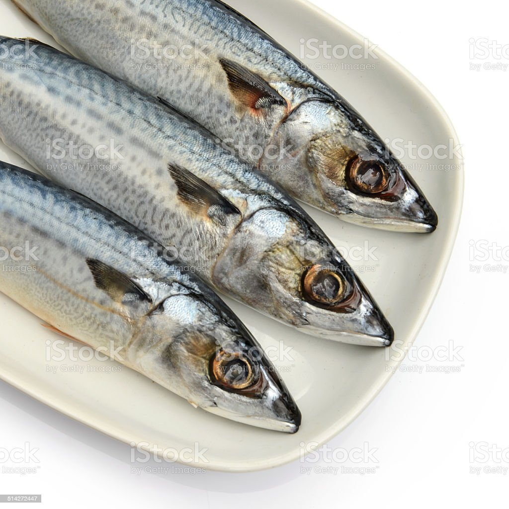 Fresh fish Mackerel, tuna, saba, in white plate stock photo