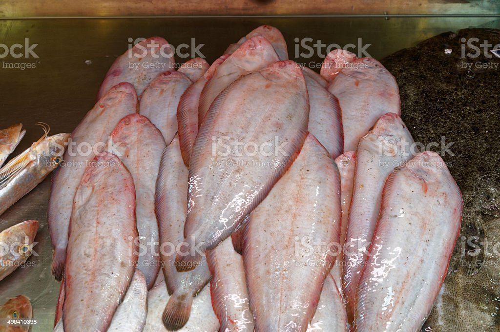 Fresh fish of Mediterranean cooking stock photo