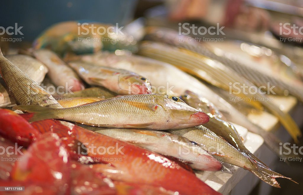 Fresh fish on a market, Boracay, Philippines royalty-free stock photo