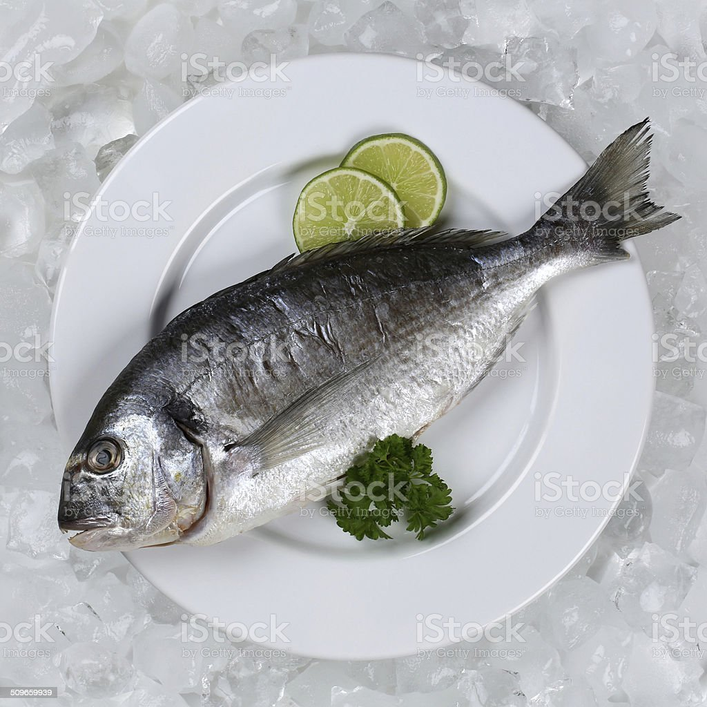 Fresh fish on a plate from above stock photo