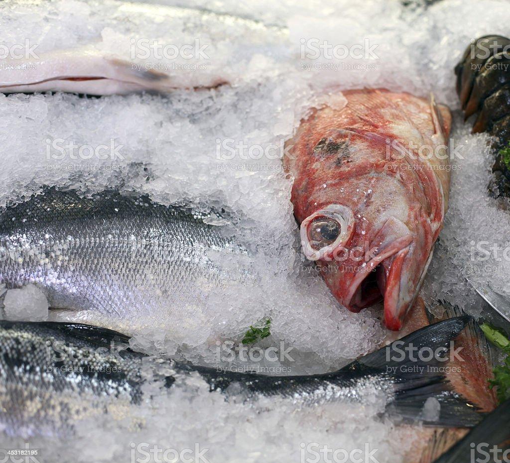 Fresh fish on ice at Pike Place Market, Seattle, Washington. royalty-free stock photo
