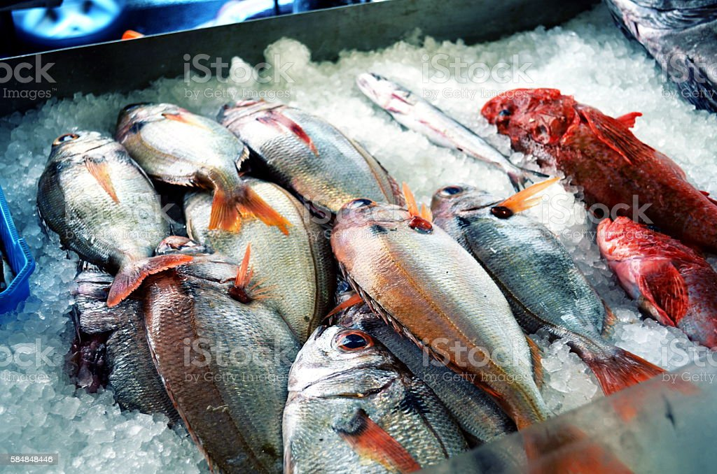 fresh fish on ice at the marked stock photo