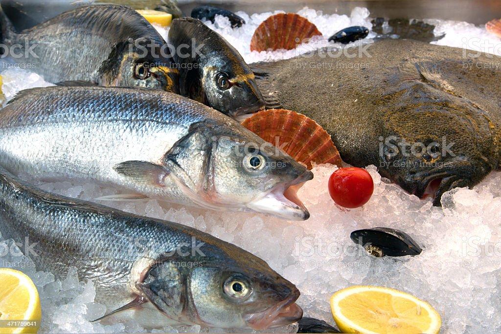 Fresh fish on ice royalty-free stock photo