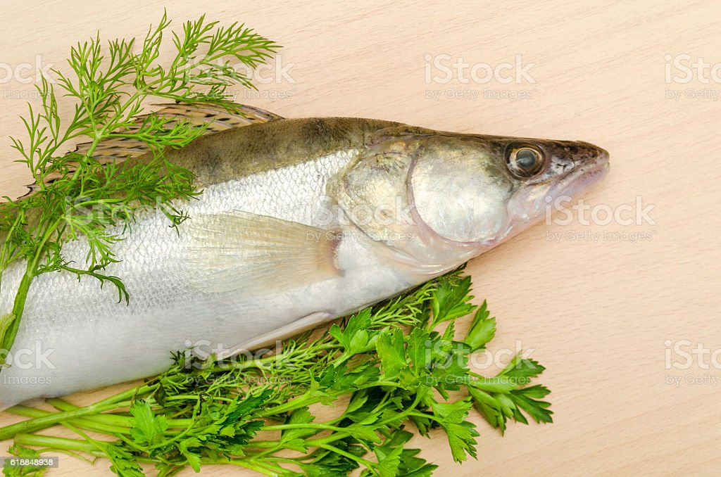 Fresh fish pike perch with herbs closeup on wooden background stock photo