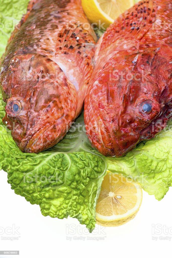 Frischer Fisch mit Kohl und Zitrone. – Foto
