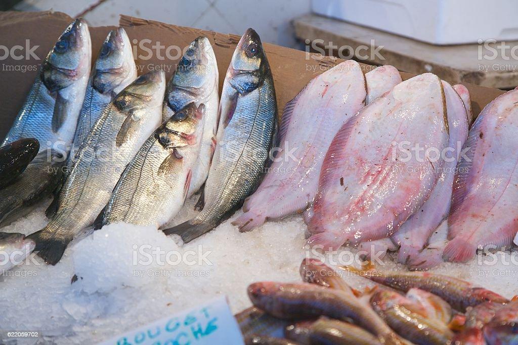 Fresh fished fish at the fish market stock photo