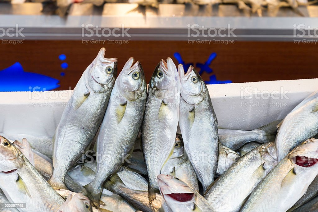 Fresh fishes at the market stock photo