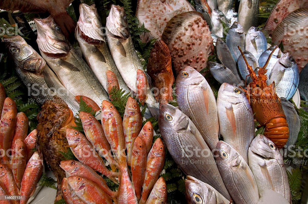 Fresh fishes in various size, shapes and colors royalty-free stock photo