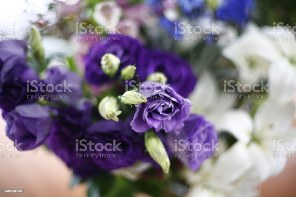 Fresh flower arrangement in natural light - domestic interior royalty-free stock photo
