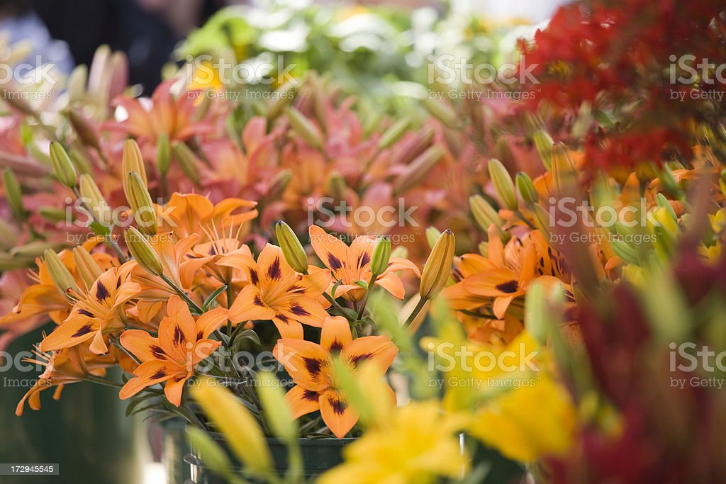 Fresh Flowers at Market royalty-free stock photo