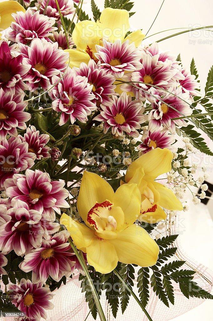 Fresh flowers royalty-free stock photo
