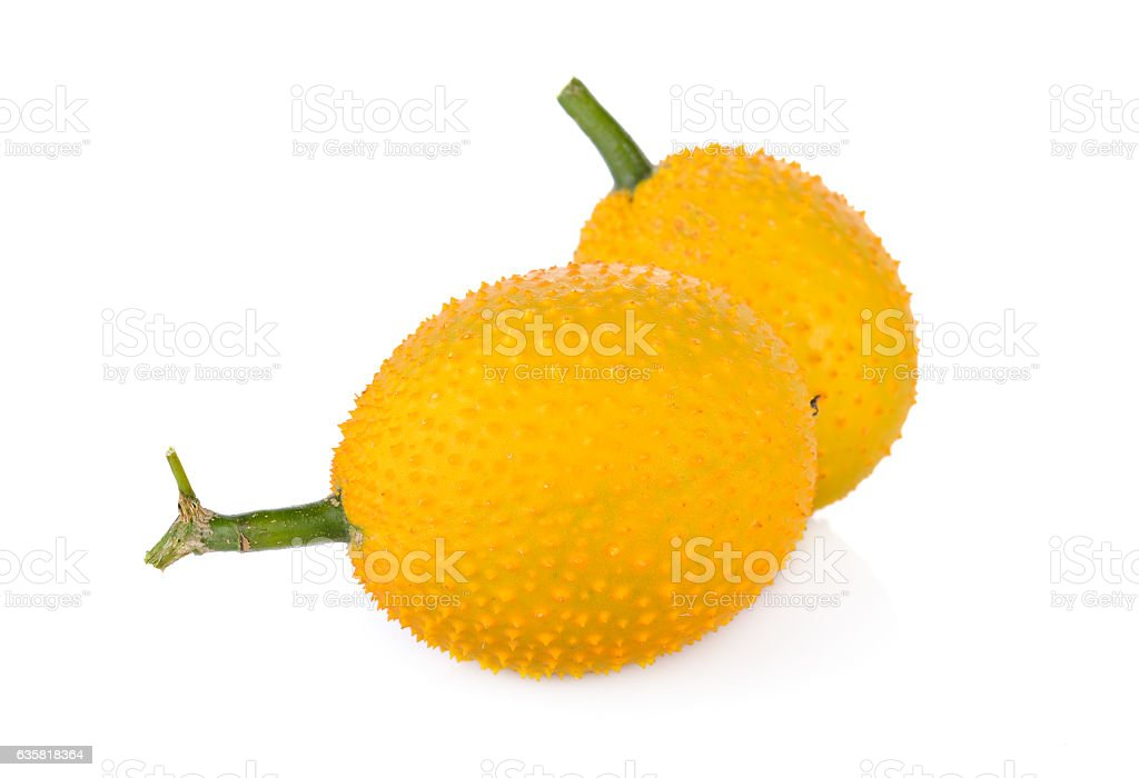 fresh Gac fruit with stem on white background stock photo