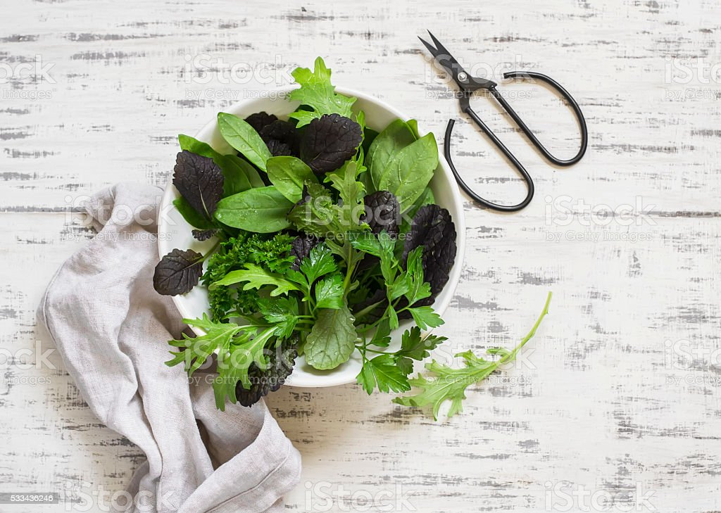 Fresh garden herbs and scissors on a light wooden background stock photo
