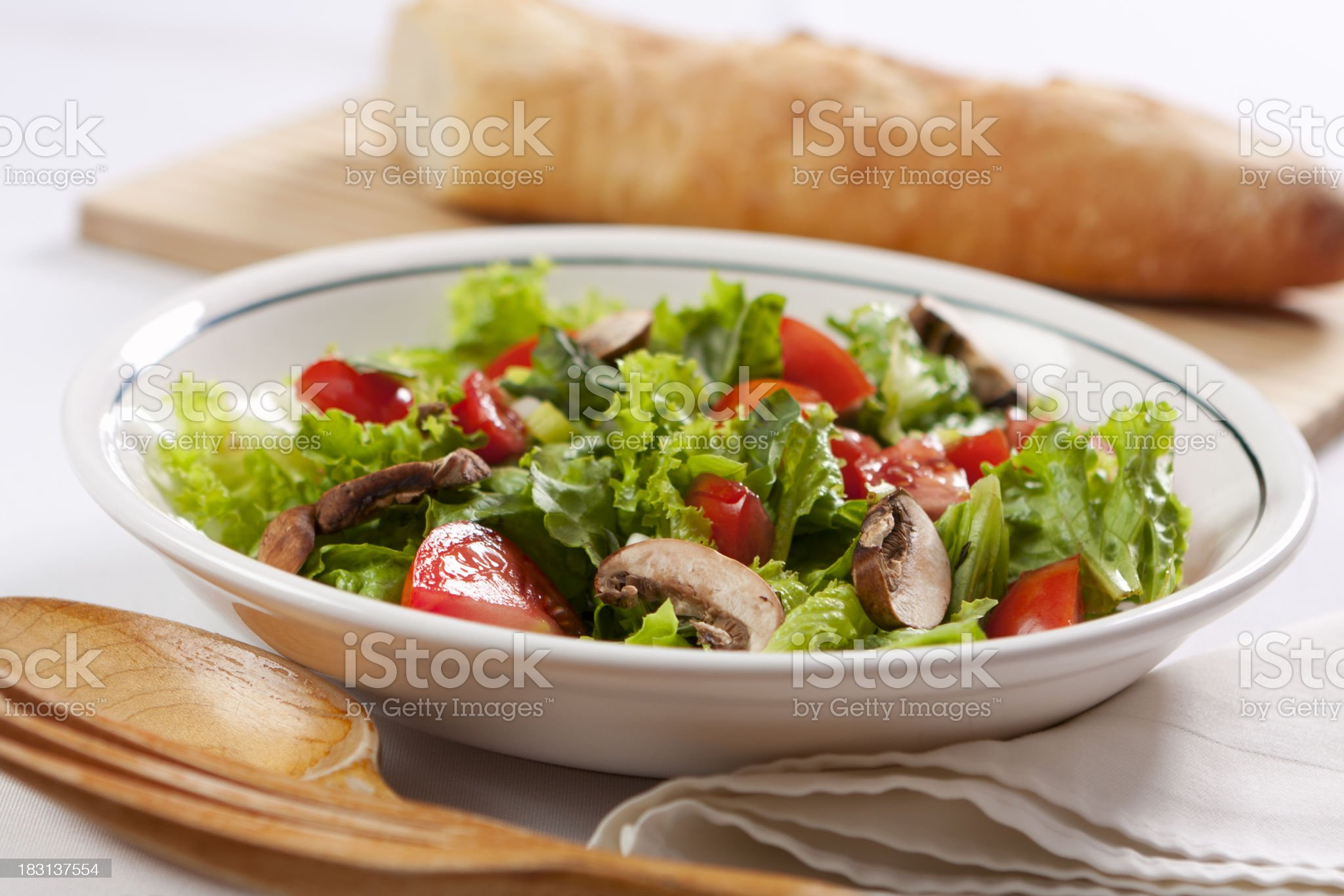 Fresh Garden Salad royalty-free stock photo