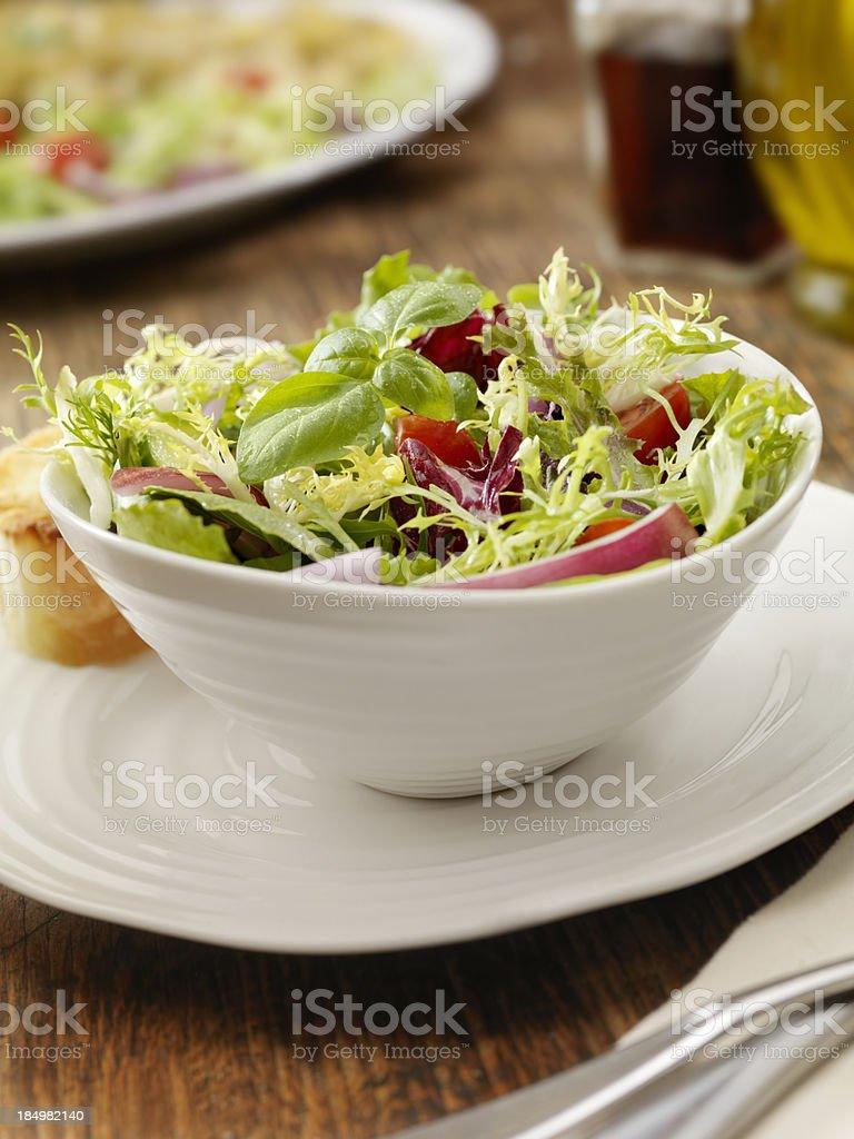 Fresh Garden Salad royalty-free stock photo