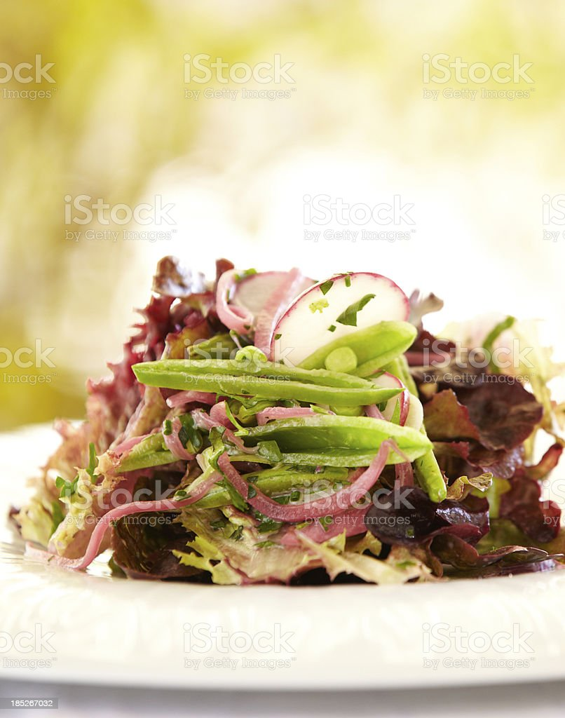Fresh garden salad with beets, carrots, lettuce and snap peas royalty-free stock photo