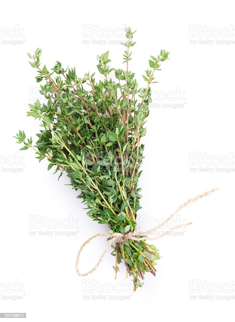 Fresh garden thyme herb stock photo