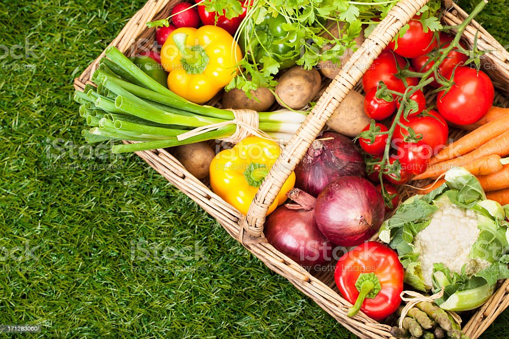 Fresh garden vegetables in a wicker picnic basket stock photo