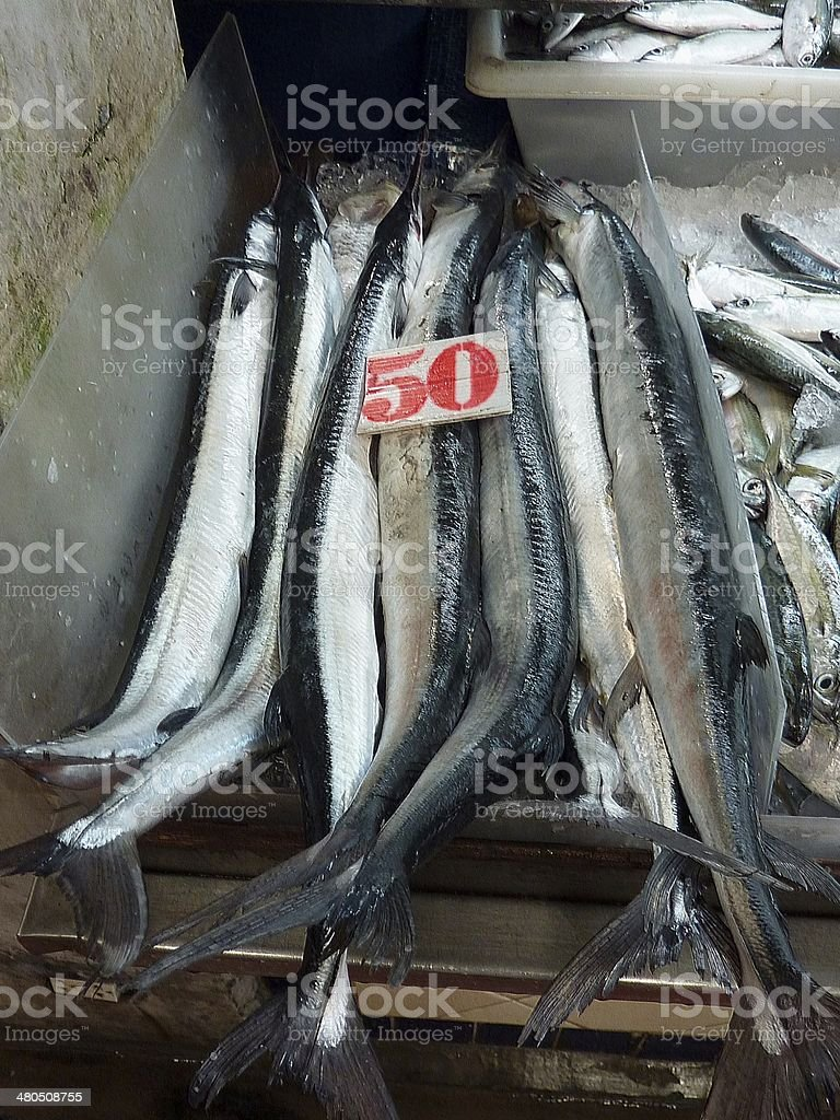 Fresh Garfish for sale in Banzaan Market, Patong - Thailand stock photo
