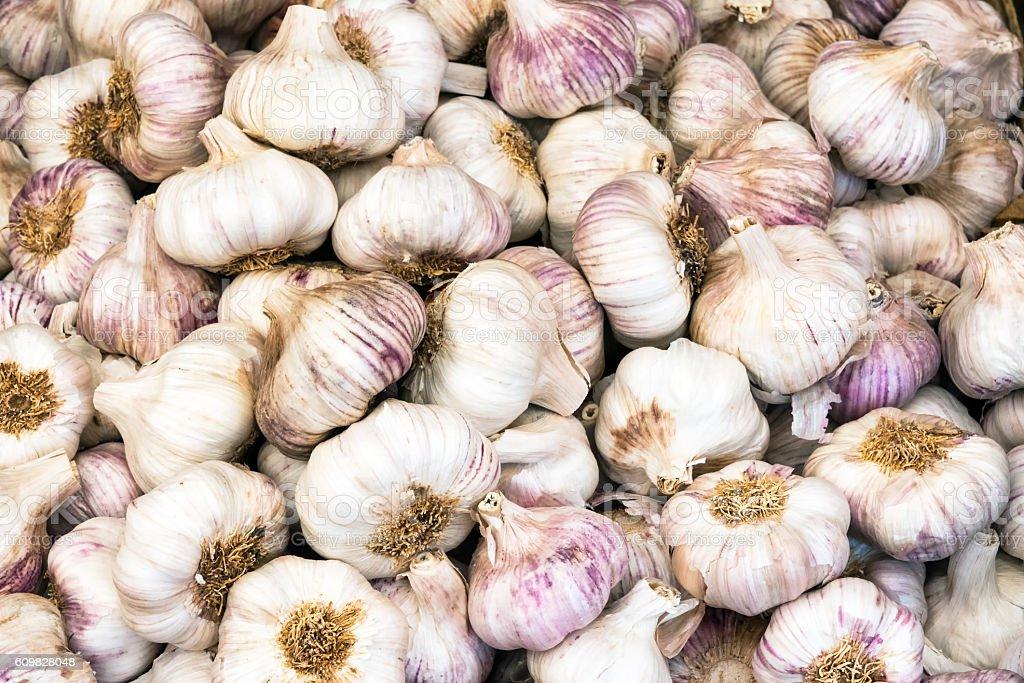 Fresh garlic bulbs for sale stock photo