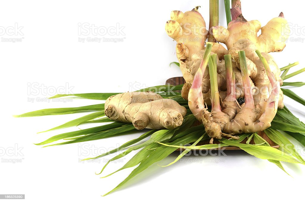 fresh ginger isolated royalty-free stock photo