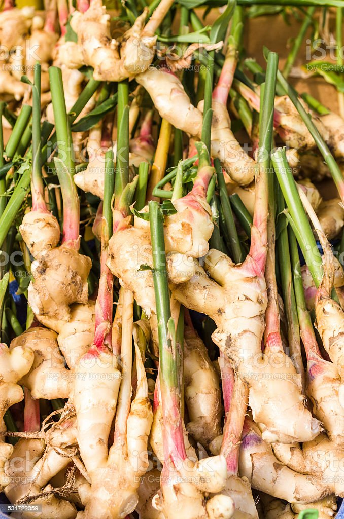 Fresh ginger root at the market stock photo