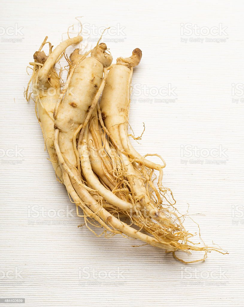 Fresh Ginseng stock photo
