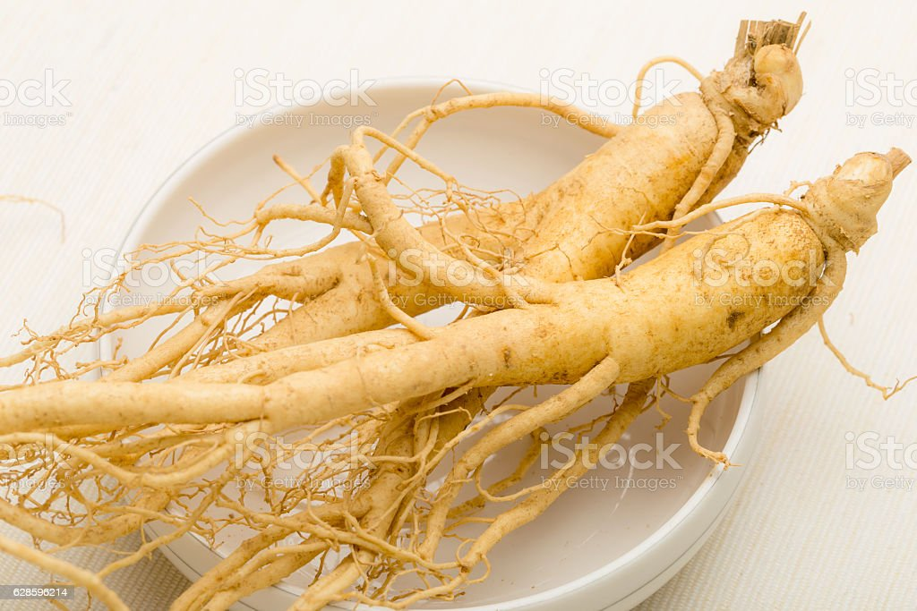 Fresh ginseng root stock photo