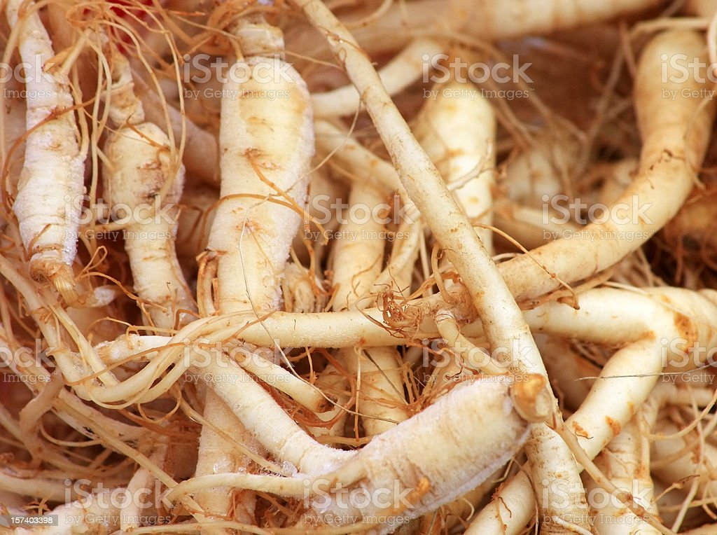 Fresh Ginseng Roots stock photo