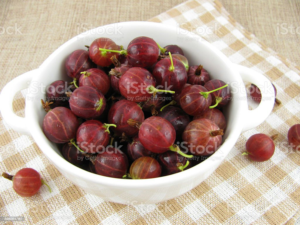 Fresh gooseberries stock photo