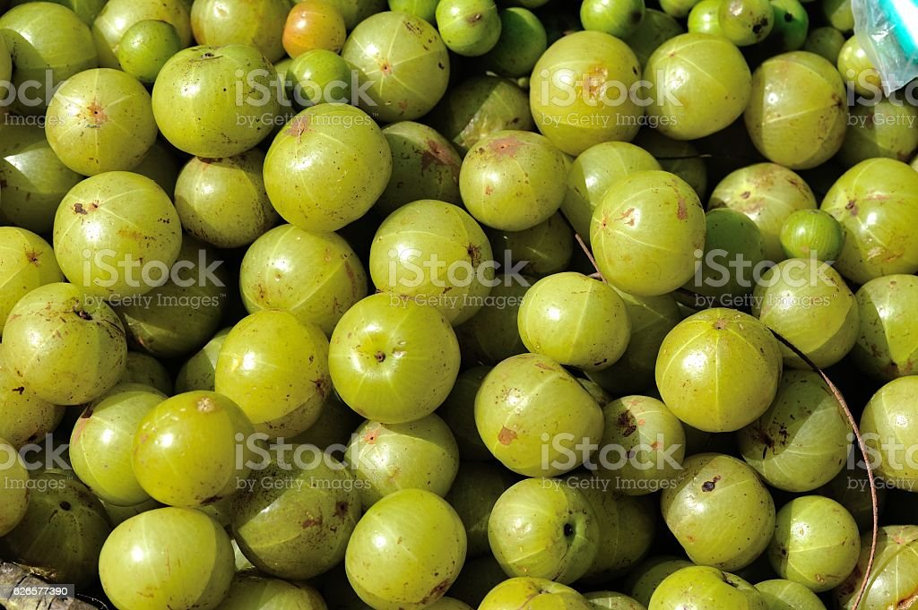 fresh gooseberry stock photo