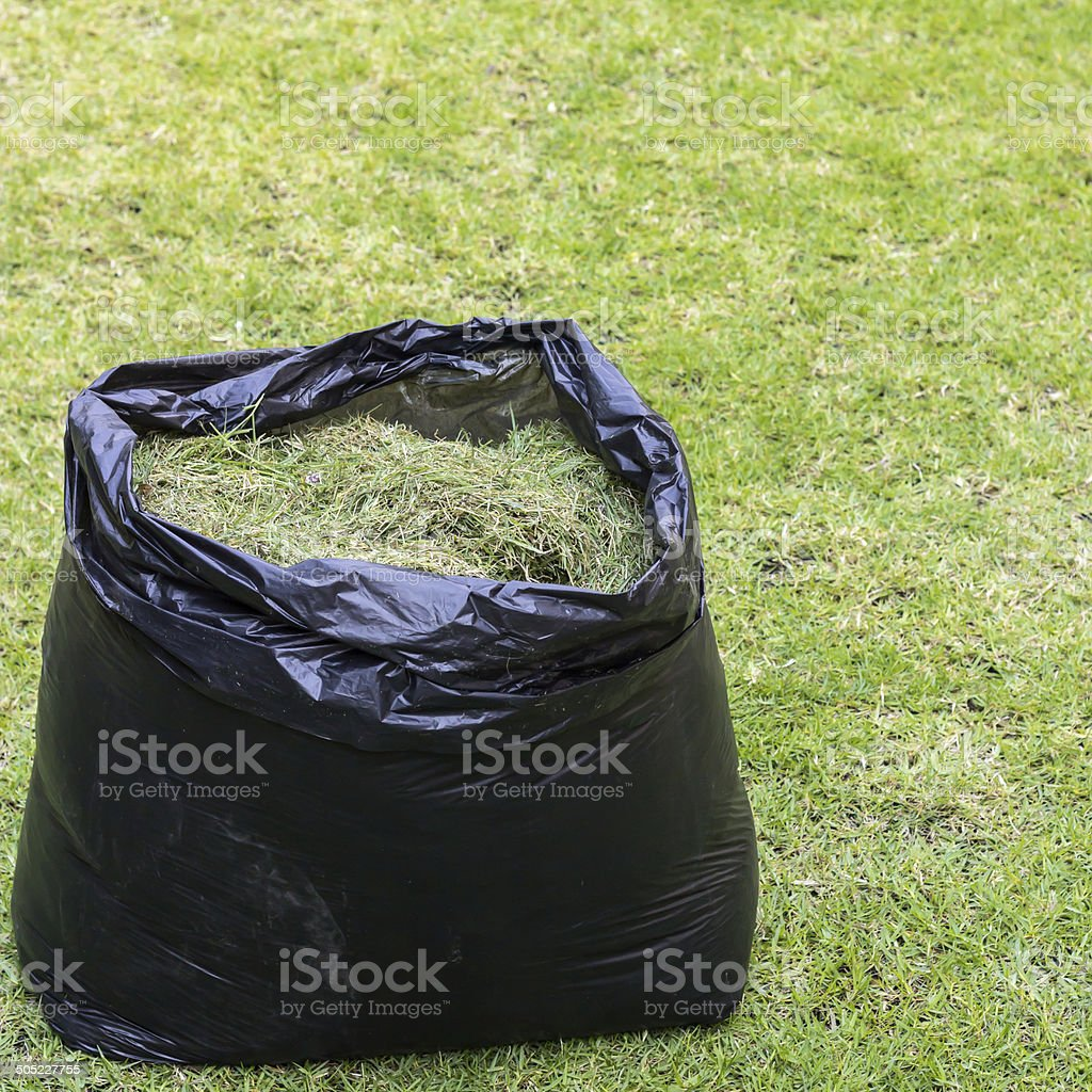 fresh grass clippings stock photo