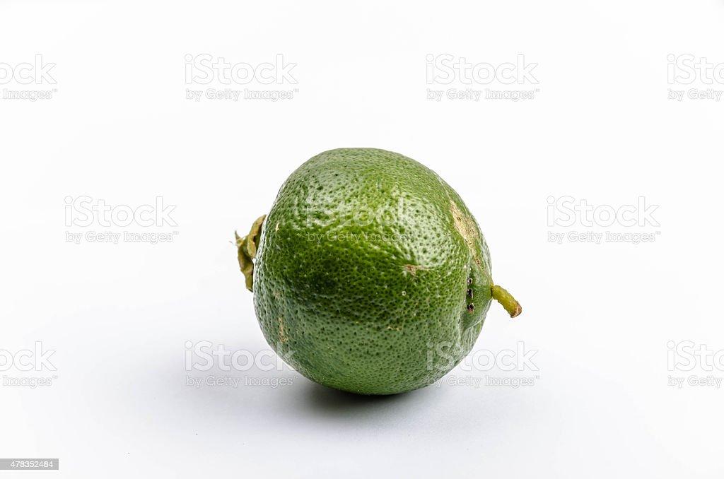 Fresh Greek Lime stock photo