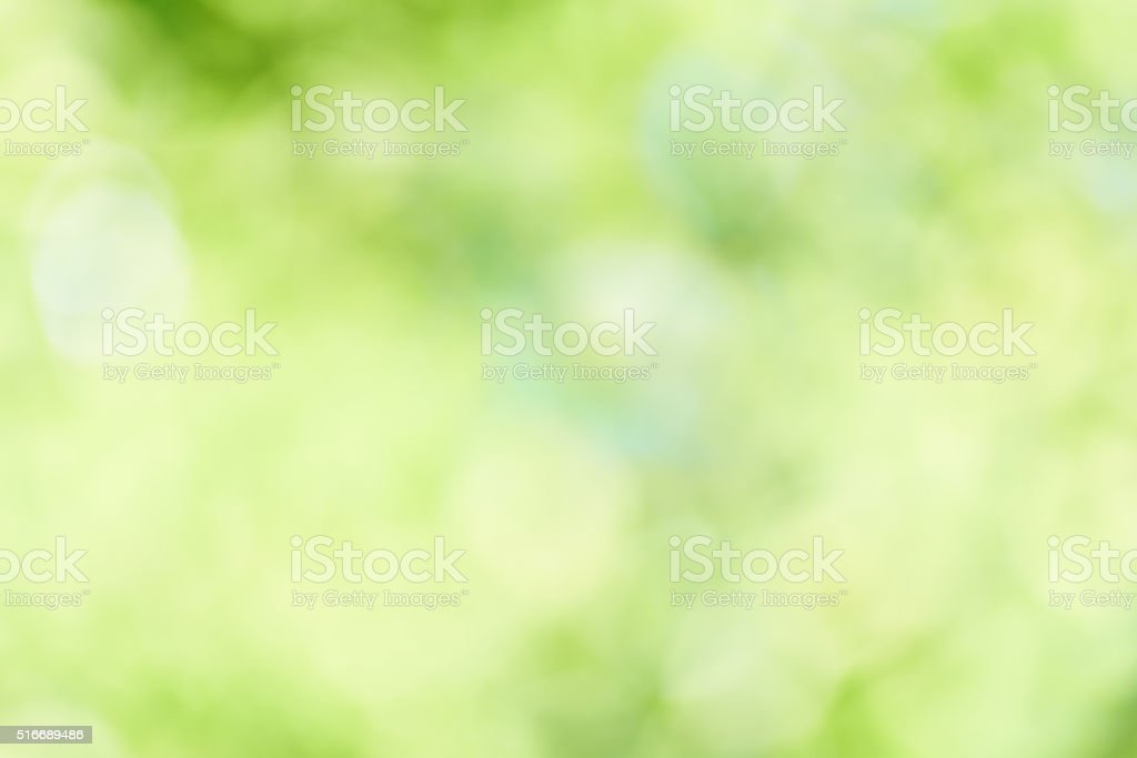 Fresh green background stock photo