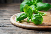 Fresh green basil on the wooden table