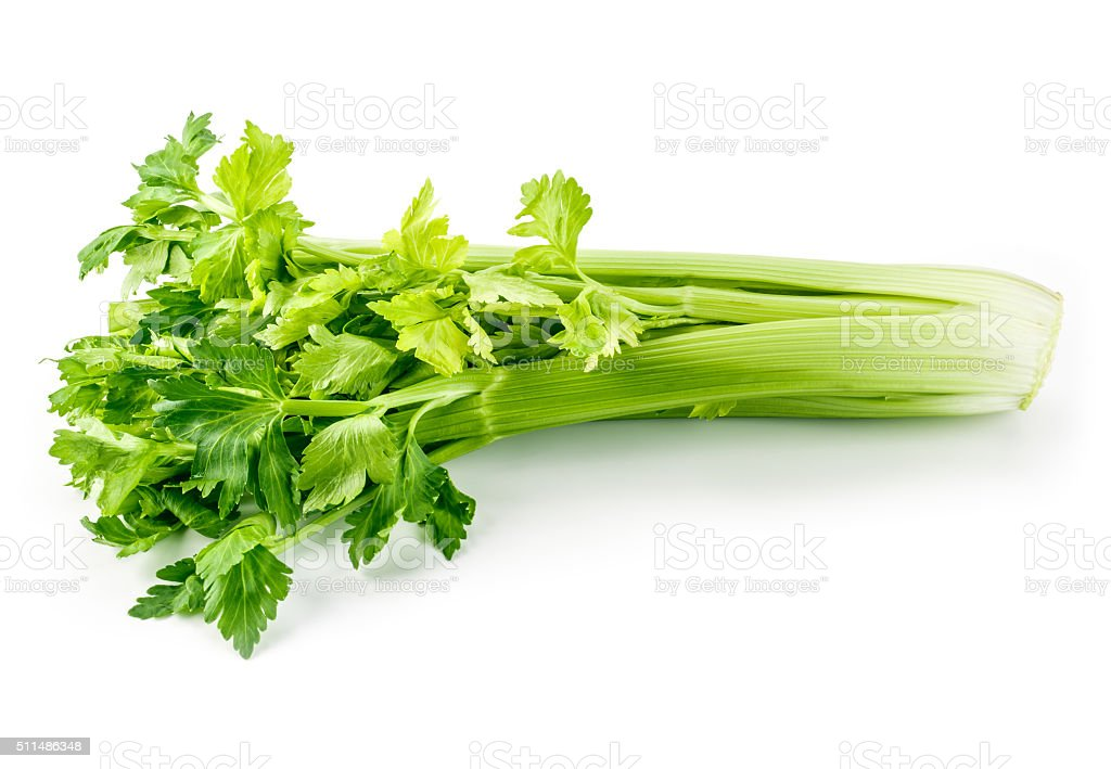 Fresh green celery isolated on white stock photo