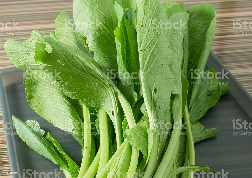 Fresh Green Chinese Cabbage on A Tray stock photo