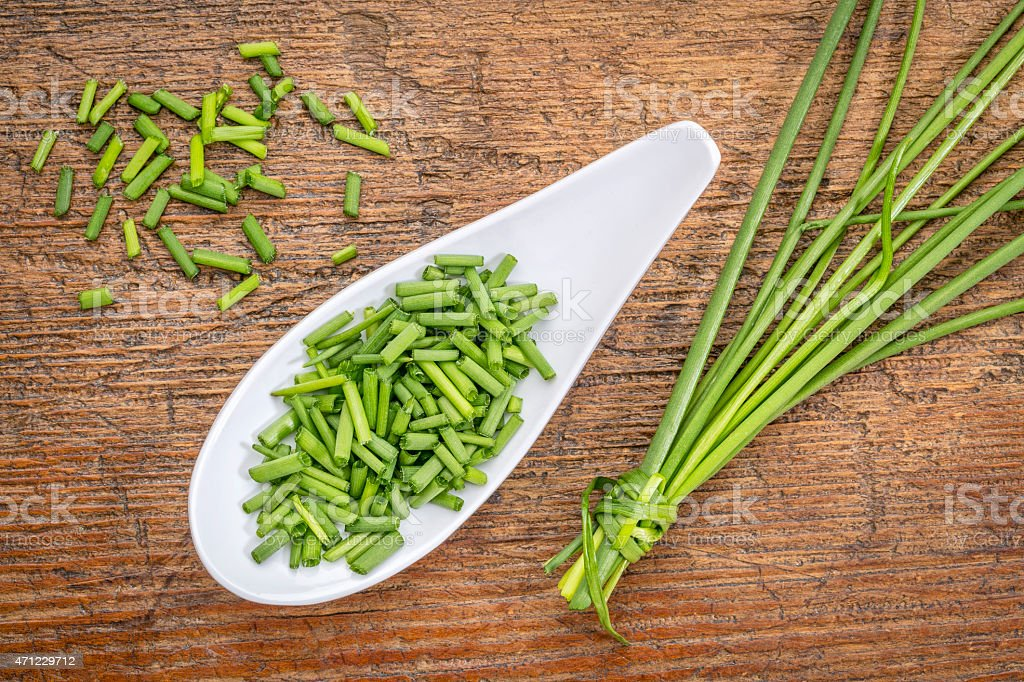 fresh green chives stock photo