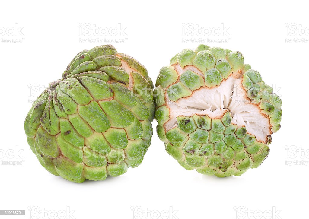 fresh green custard apple isolated on white stock photo