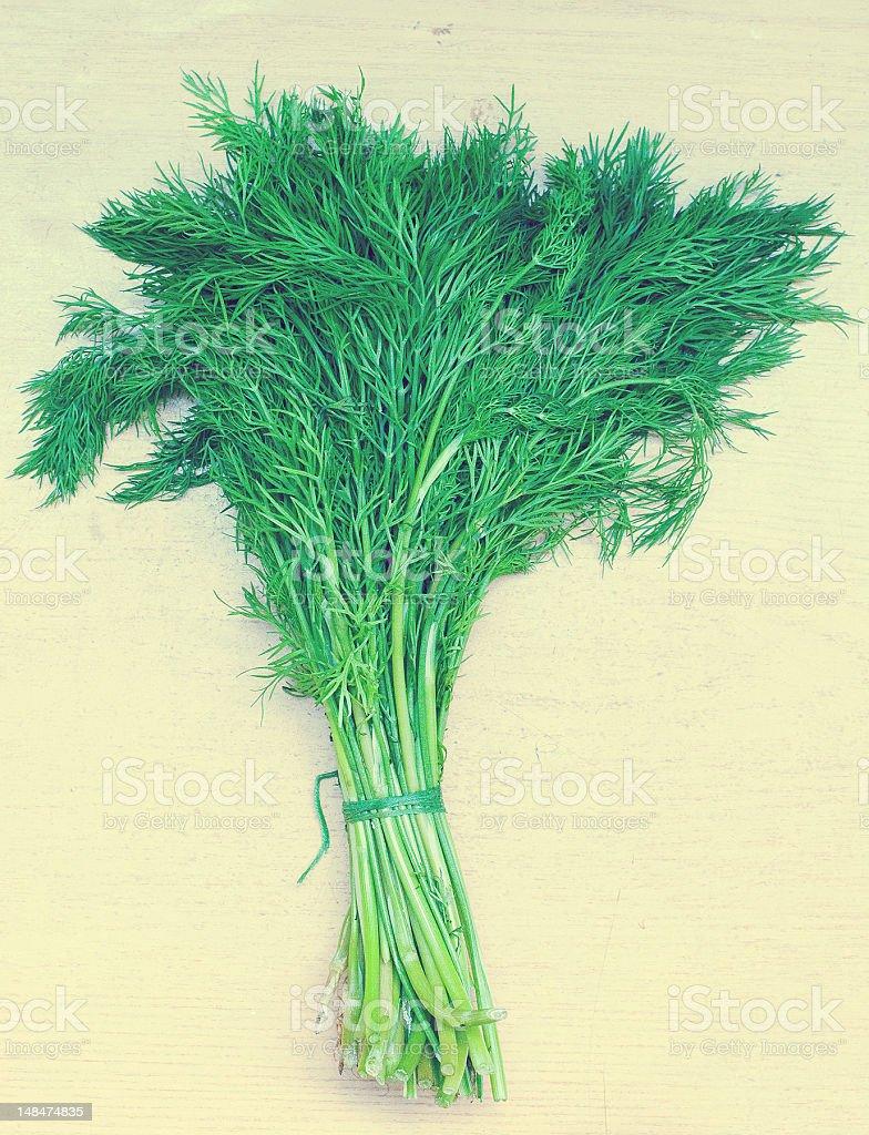 Verde fresco eneldo foto de stock libre de derechos