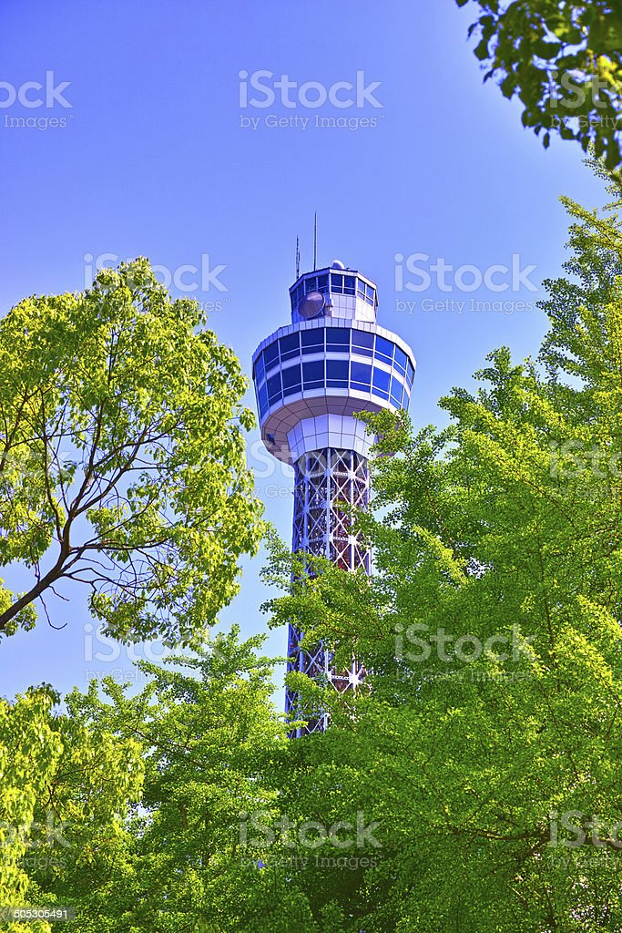Fresh green ginkgo and tower stock photo