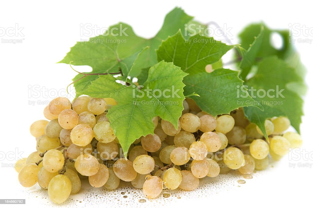 Fresh green grapes royalty-free stock photo