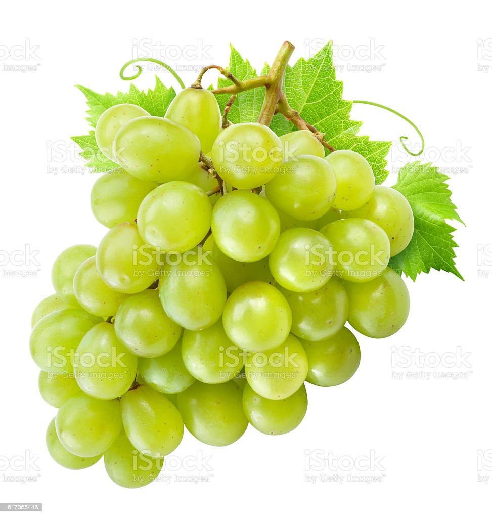 Fresh green grapes with leaves. Isolated on white. Clipping path. stock photo