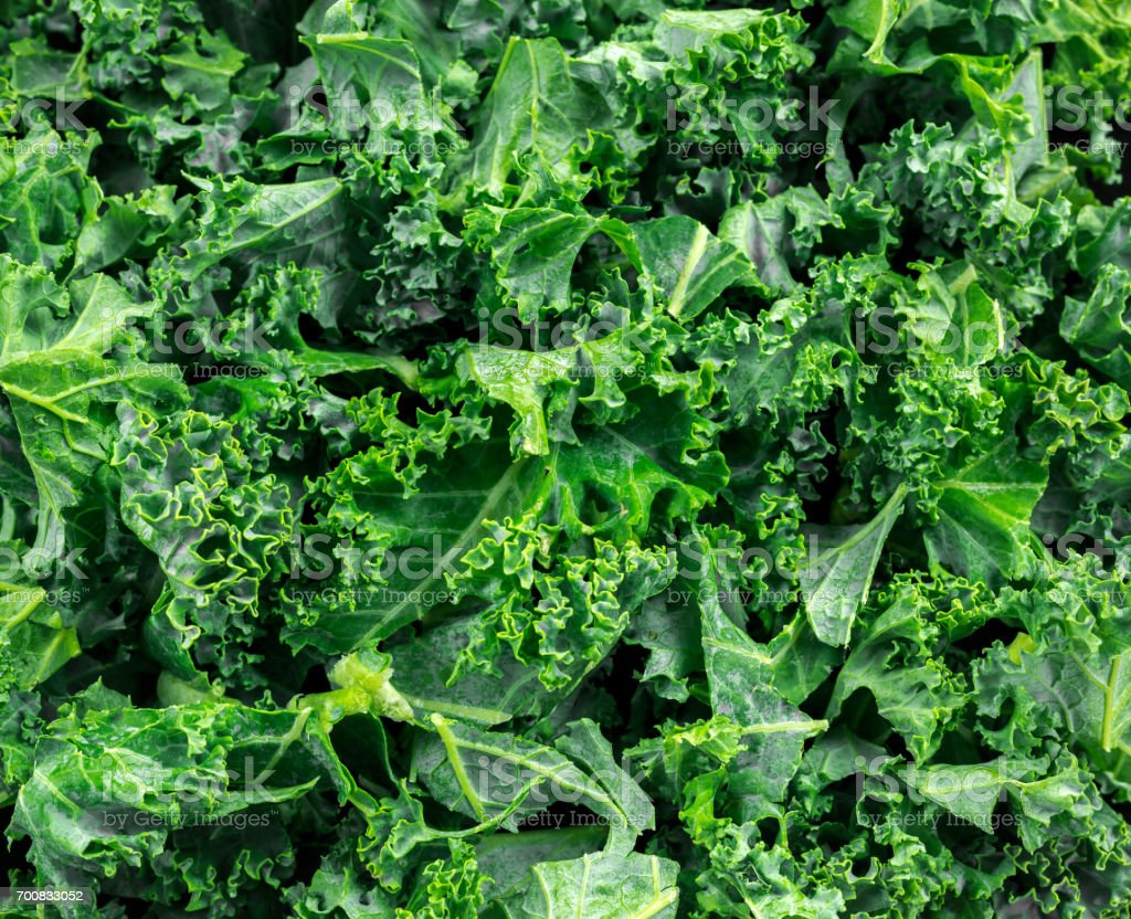 Fresh green healthy superfood vegetable kale leaves on wooden rustic table stock photo