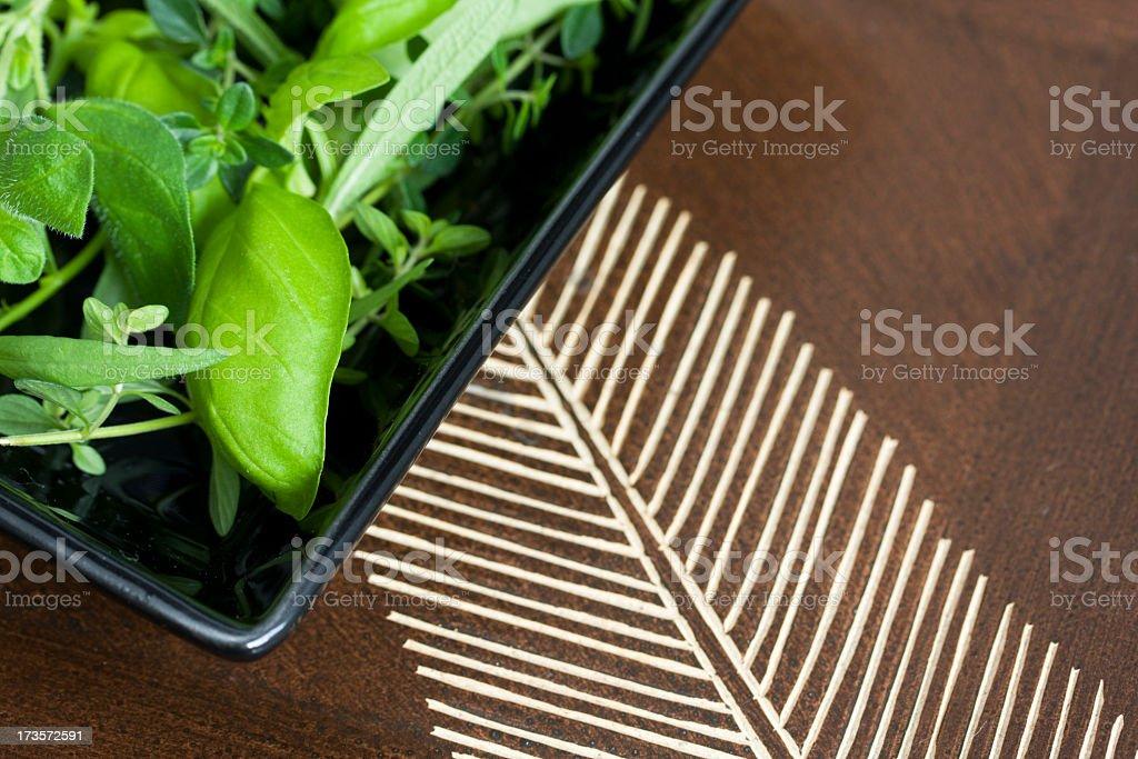 Fresh green herbs. royalty-free stock photo
