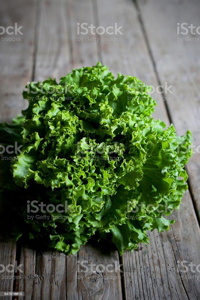 Fresh green leaf lettuce, salad, organic farm produce stock photo