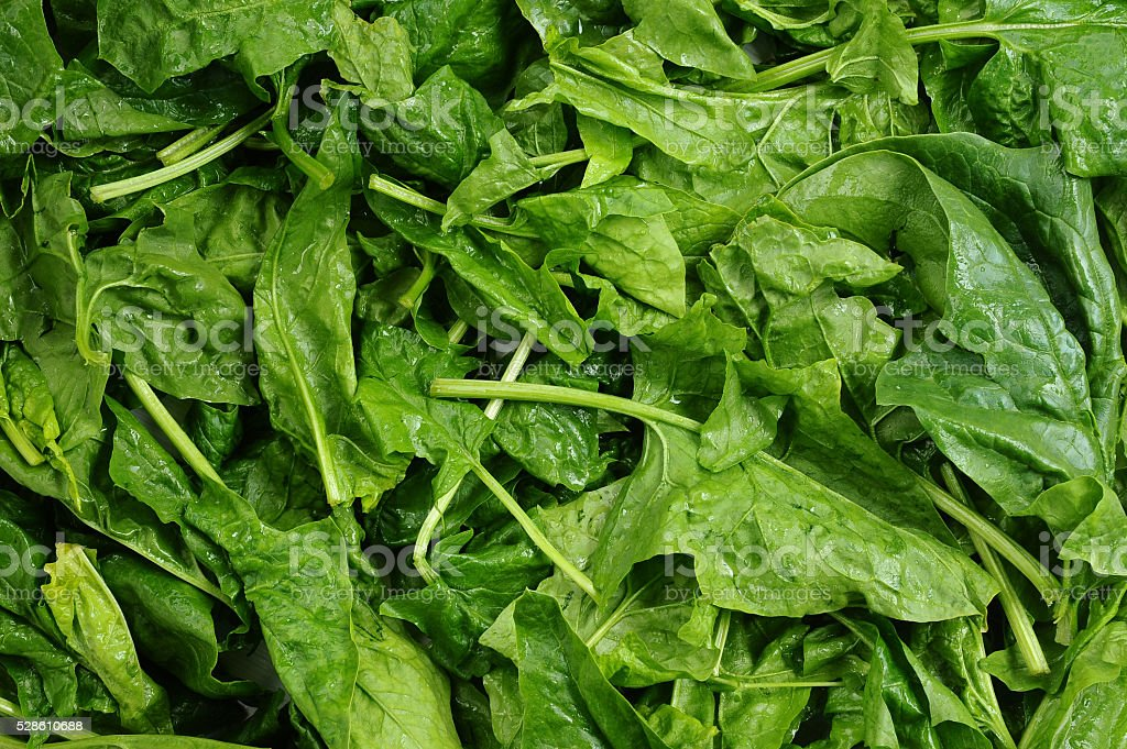 fresh green leaves spinach or pak choi stock photo
