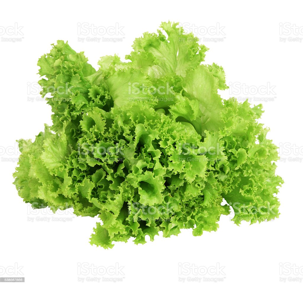 Fresh green lettuce leafs isolated on white background stock photo