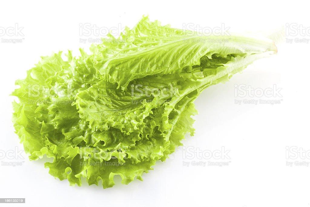 fresh green lettuce salad closeup stock photo